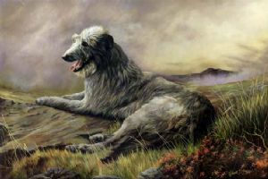 Limited Edition Deerhound Print RMLE14